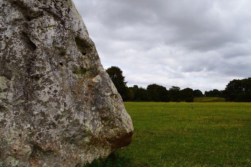 Il volto della saggezza di una roccia Cloud - Sky Sky Plant Tree Nature Tranquility My Best Travel Photo Rural Scene Landscape No People Land Beauty In Nature