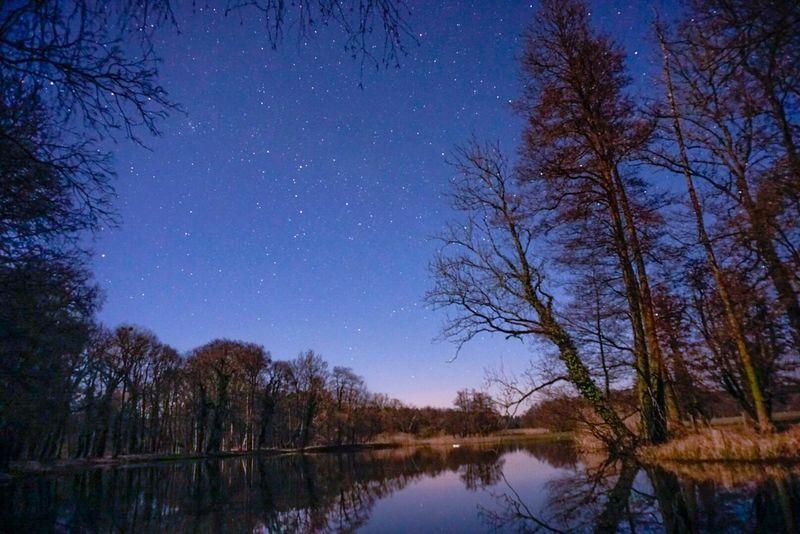 Sony A6000 Starry Sky Stars Landscape Brandenburg Nature Naturelovers Sky Starry Night Under The Milky Way The Countryside At Night