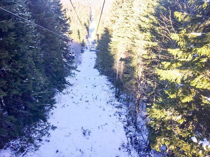 Ski lift Bulgaria❤️ Rodopi Mountain Naturephotography Rodopi Rodopi Mountain Mountain Ski Holiday Ski Lift Nature Winter Snow Day Cold Temperature Tree No People Outdoors Beauty In Nature