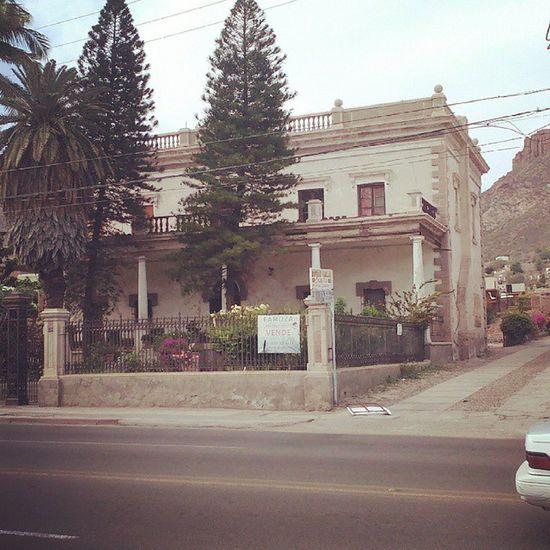 Antigua Casona de Don Pedro Albin Antiguo Casona Guaymassonora Historico Oldtimes Pasado