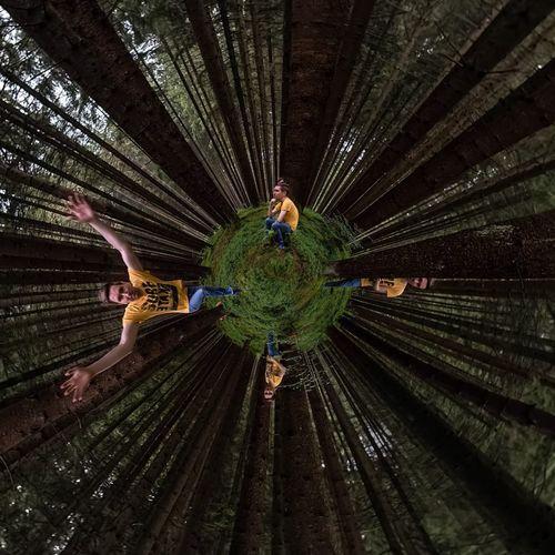 Rear view of people walking on ceiling