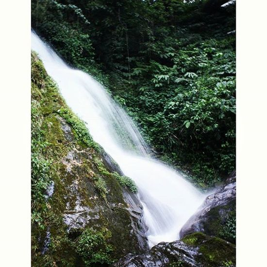 F-22 1/10. ISO 200 Waterfall Slow Shutterbug Green Forest Mountains MountainLovers Patterns Picoftheday Awesome Photography Photographers_tr MemoryLane Thememorylane Followforfollow Bindebros Naturephotography Captureyourcity Movingmagicclicks Colours Instapic Instaphoto Photographersofindia DSLR Canon canonclicks likesforlikes followforfollow sikkimdiaries