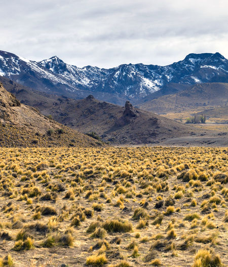 Roads in autumn through the andes mountain range. the longest continental mountain range.