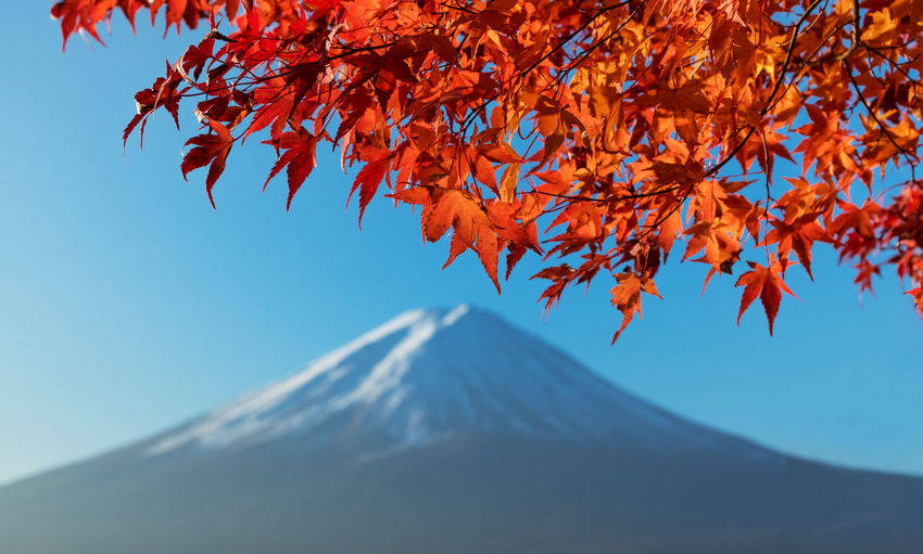 Low Angle View Of Mountain Against Clear Sky During Autumn