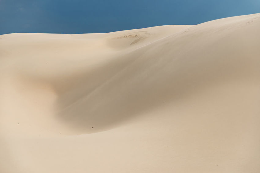 Proportions Australia Desert Dramatic Sky Dunes Textured  Abstract Blue Sky Clouds And Sky Contrasting Colors Desert Dramatic Clouds Dunescape Fading Landscape No People Peaceful Proportions Sand Sand Color Sand Dune Sand Dunes Softness Stockton Dunes Storm Cloud