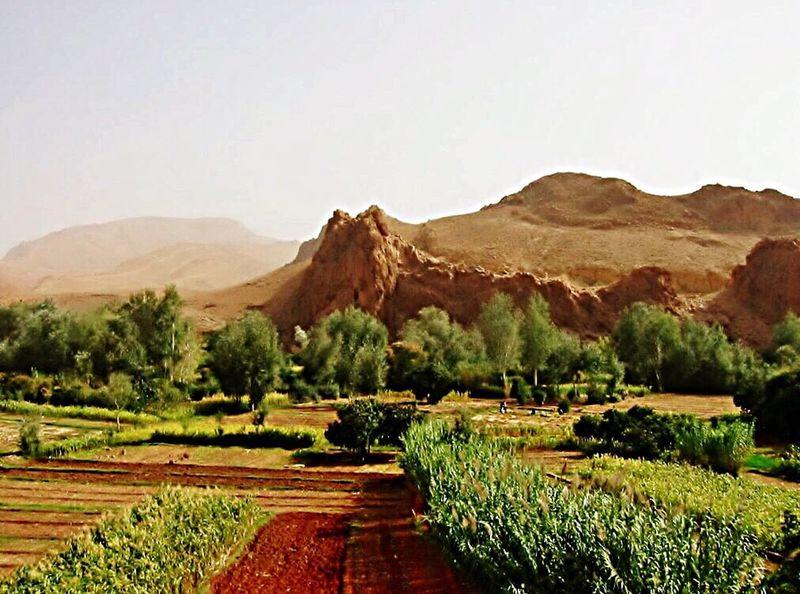 Marokko, schönes Land / Beautiful Land First Eyeem Photo Showcase March Nature Photography Nordafrika