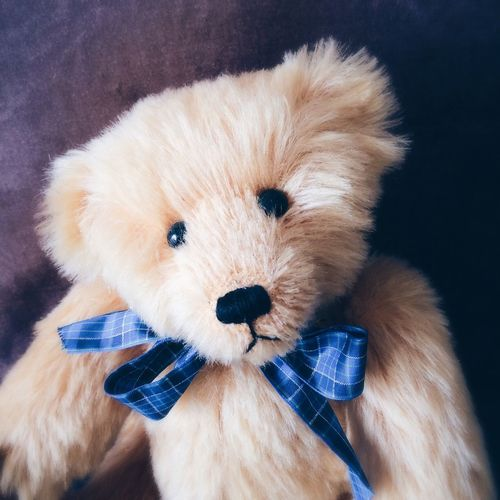 Teddy bear Teddy Bear Cuddly Toy Childrens Cuddly Toy Furry Fluffy Friend