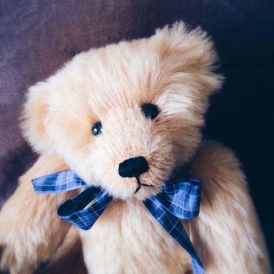 Teddy bear Teddy Bear Cuddly Toy Childrens Cuddly Toy Furry Fluffy Friend