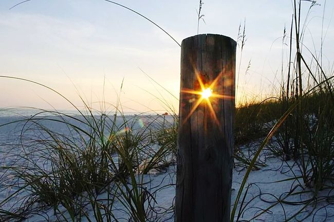 Sunset Lens Flare Sun Nature Sunbeam Sunlight Back Lit Scenics Sky Silhouette Tranquil Scene Water Plant Outdoors Landscape Tranquility Grass Beauty In Nature No People Winter Beach Sand Sand Dune