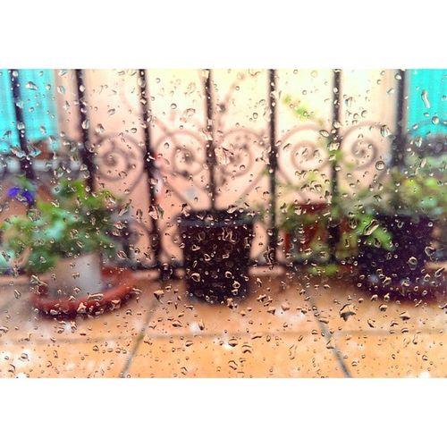 avui per la tarda una mica de calamarsa. Caramarsada Rain Photogrid
