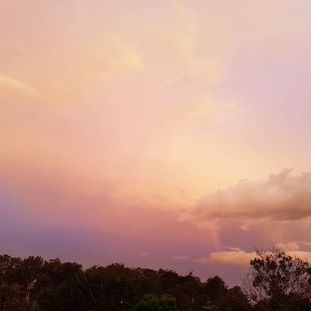Random red toned sundown today in Brisbane Dramatic Sky Orange Color Sunset Cloud - Sky Tree Sky Forest Outdoors Nature Storm Cloud No People Beauty In Nature Day Freshness