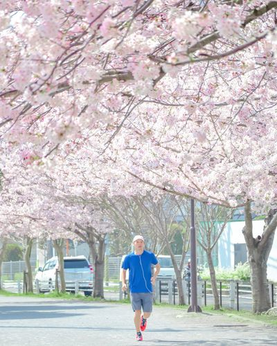 桜🌸 Nature Cherry Tree Growth Day Freshness Cherry Blossom Lifestyles Park - Man Made Space Real People Full Length Fragility Park Beauty In Nature