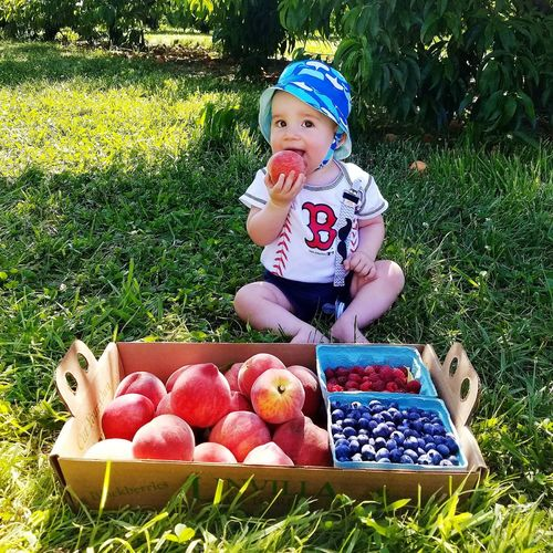 Cashmoney  My Baby Boy Baby Childhood Innocence Grass The Week On EyeEem Outdoors Child One Person Peaches🍑 Peaches In A Box Rasberries Blueberry Picking Blueberries Portrait Sommergefühle EyeEm Selects