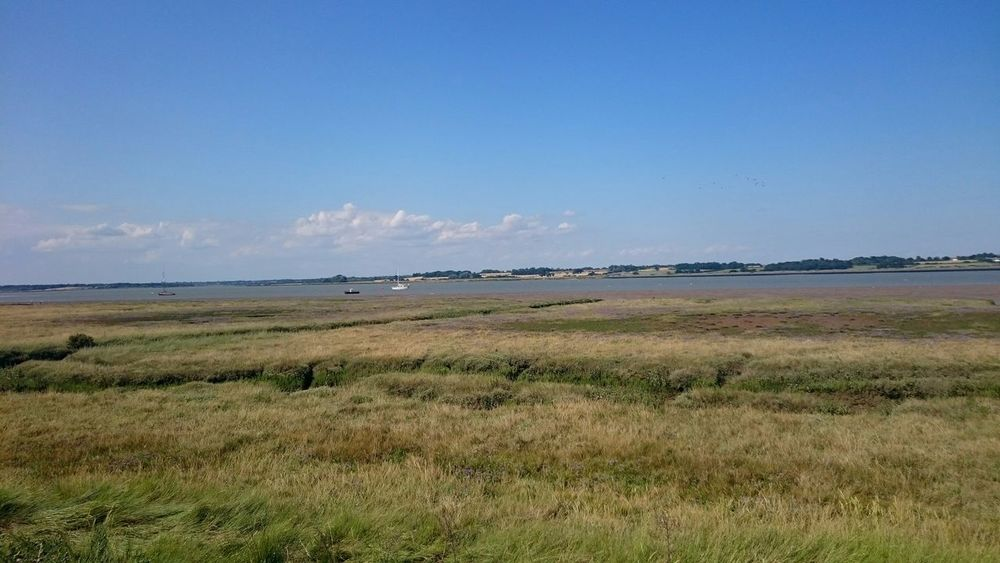Wetlands Essex Coast Tranquil