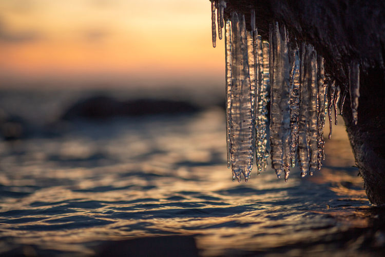 Close-up of icicles in sea against sky during sunset