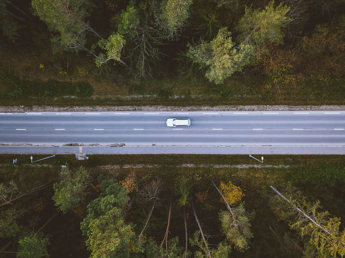 Directly above shot of car on road amidst trees at forest