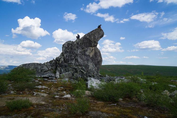 Tree on rock against sky