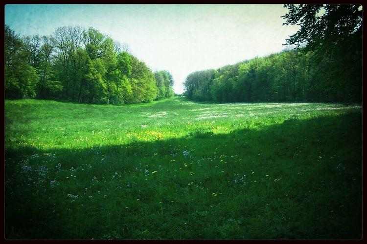 Landscape Landschaft Nature_collection