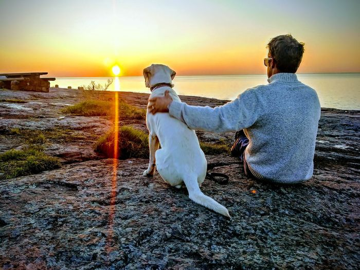 Rear view of man with dog sitting at beach against sky during sunset