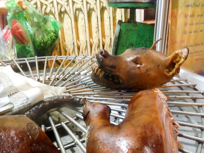 Animal Themes Crazy Food Culture And Tradition Dog Dog Meat Doghead Dogs Food No People Vietnam Vietnamese Food