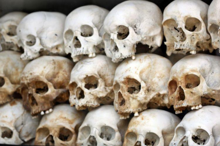 Anatomy Choeung Ek Choeung Ek Genocidal Centre Choeung Ek Genocide Museum Choeung Ek Killing Field Choeung EK Mass Grave Close-up Day Human Body Part Human Bone Human Skeleton Human Skull Khmer Rouge Khmer Rouge Victims People Phnom Pehn Phnom Pehn, Cambodia Skull Face Skulls Skulls And Bones Victim Of War