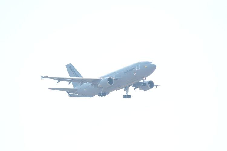 Airbus Airbus