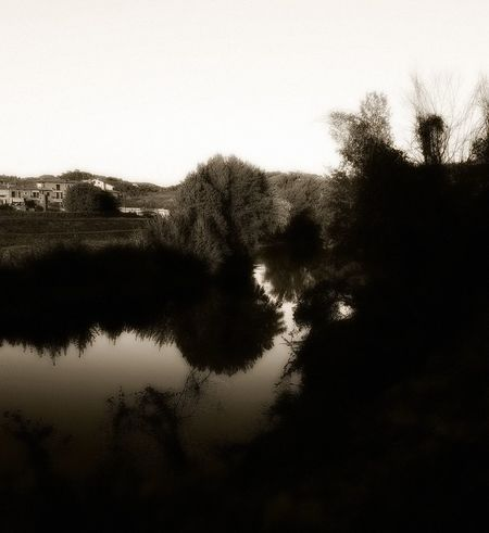Water Reflection Silhouette No People Outdoors Sky Close-up Tree The Week On EyeEm Been There. The Week Of Eyeem Pomeriggioalternativo EyeEm Best Shots Black & White Blackandwhite Blackandwhite Photography Black And White Arno River Lungarno Fine Estate.. River Running Water