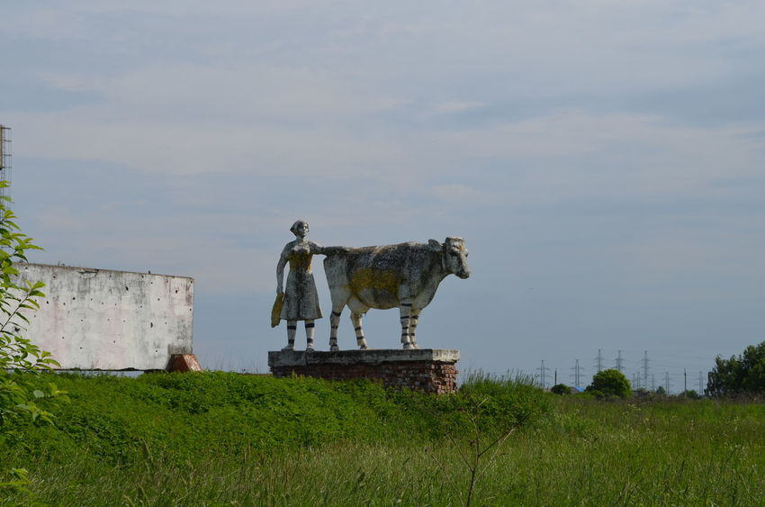 Old soviet sculpture ЯПРФ Cow Grass Landscape Outdoors Russia Sculpture Sky Soviet Statue Sculpted Farm Animal
