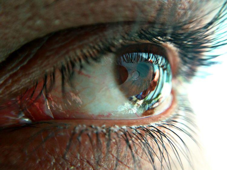 Eye never Lie Photography Picoftheday #macrophotography Photo Photographer Wallpaper Beauty Beautiful Hope Close-up Iris - Eye Sensory Perception Full Frame Reflection Eyelid Eyeshadow Eye Make-up Extreme Close-up Eyebrow Macro Vision