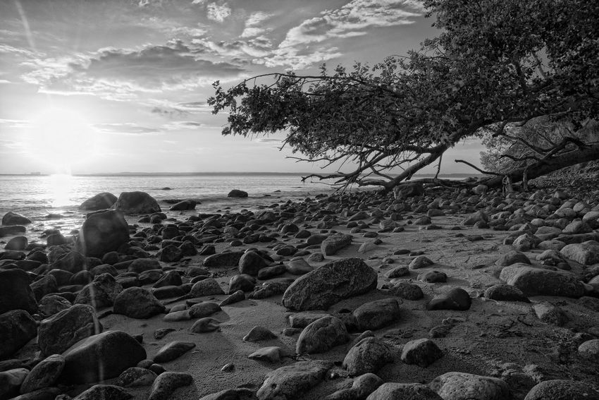 Ocean Ocean View Stones Water Maritime Beach Nature Dusk Dawn Sunset Niendorf Brodtener Ufer Germany Schleswig-Holstein Baltic Sea
