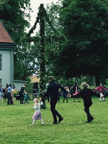 Midsummer Domestic Grass Real People Group Of People Green Color Field Outdoors