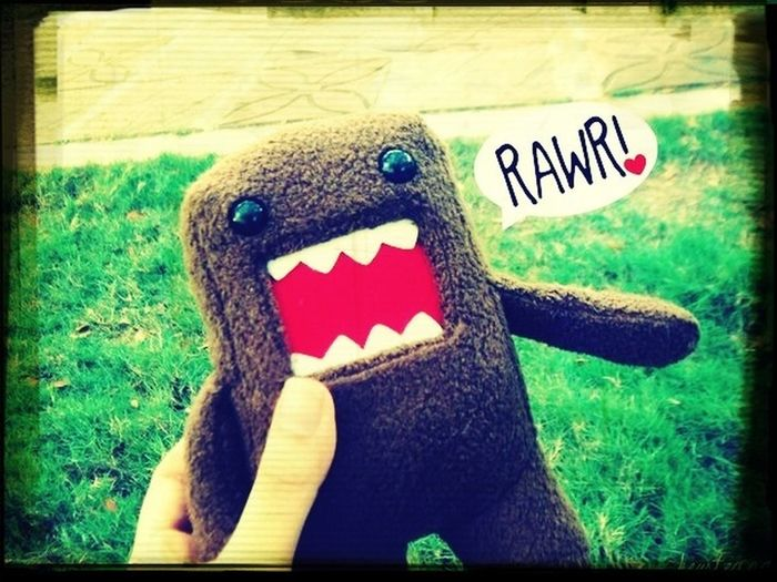 Domo Kun First Eyeem Photo
