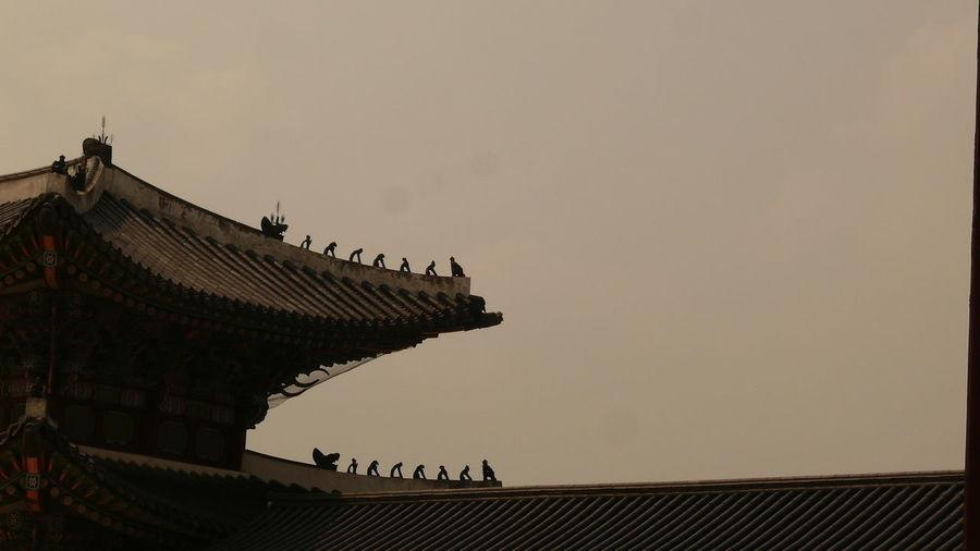 Korea 경북궁 Traditional Building