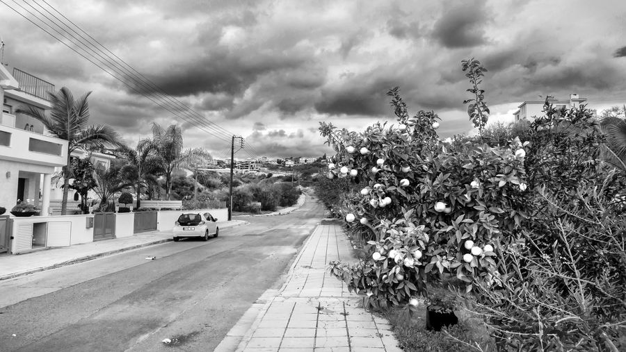 Cloud - Sky Plant Sky Tree Transportation Nature Mode Of Transportation Land Vehicle Day Direction Road Architecture No People Motor Vehicle City Outdoors Street The Way Forward Growth Built Structure Blackandwhite Black & White Clouds And Sky Landscape EyeEm