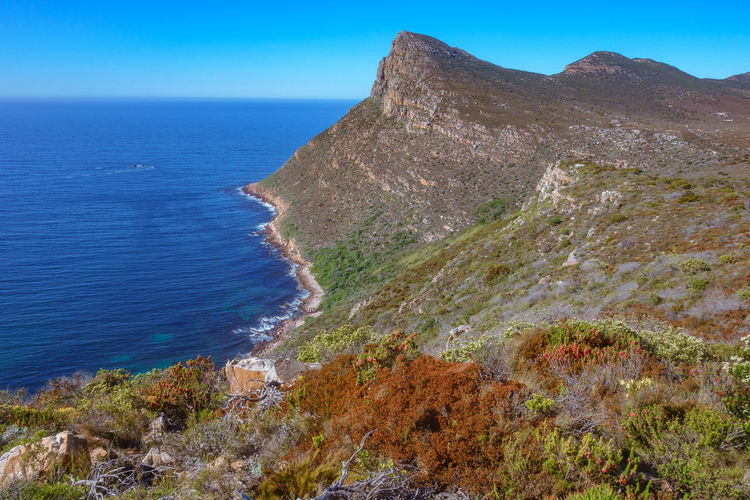 south africa 19