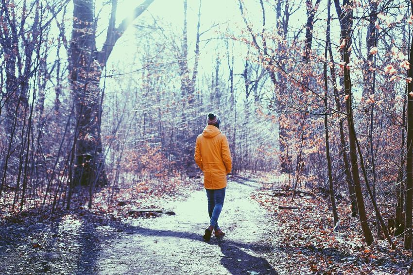 Rear View Real People Tree Forest Nature Full Length One Person Lifestyles Casual Clothing Walking Leisure Activity Day Beauty In Nature Hiking Standing Outdoors Young Adult Men Sky Adult