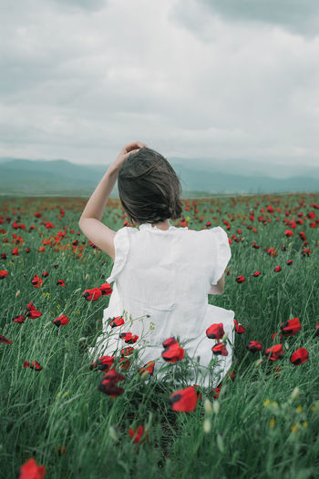 Rear view of woman on poppy field against sky