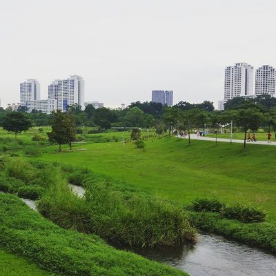 @bishanpark Allgreen 💚💚💚 Godscreation Naturesbeauty Singapore LovingLife