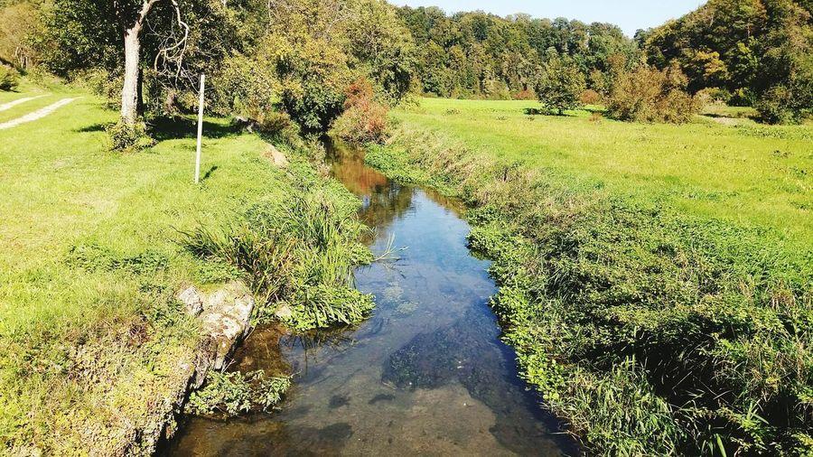 Brookside Brook