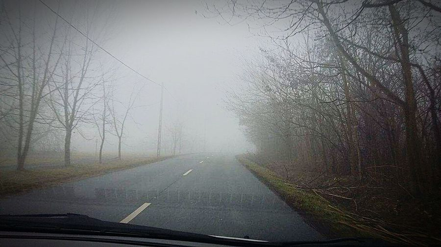 Driving Car Fog On The Road First Eyeem Photo