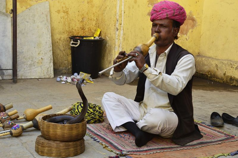 Adult Dancing Snake Day India Jaipur Jaipur Rajasthan Men Music One Man Only One Person Real People Sitting Snake Traditional Clothing Travel Travel Photography