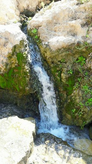 Spring Water Nature Sun Summer الساخنة الصحنة