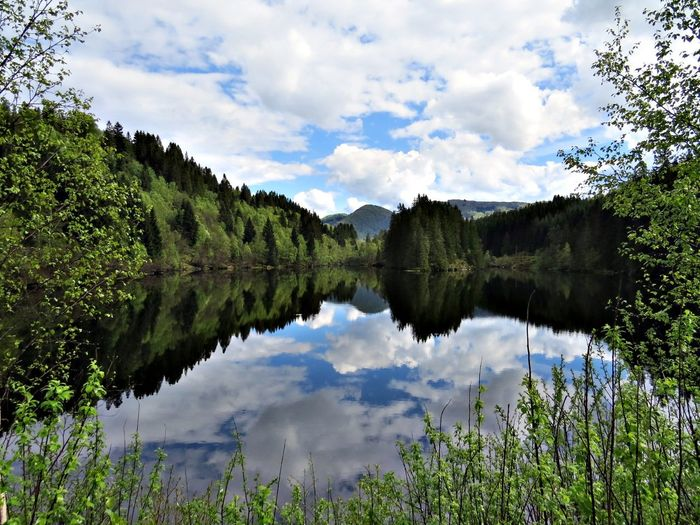 Beauty In Nature Clam Cloud - Sky Day Idyllic Lake Landscape Mountain Nature No People Osterøy Outdoors Reflection Reflection Lake Scenics Sky Springtime Symmetry Tranquil Scene Tranquility Tree Water Western Norway