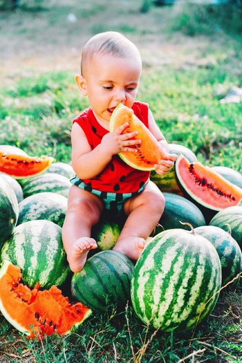 Cute baby boy eating watermelon on land