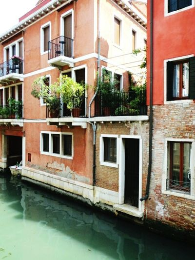 Follow the Venice Canals Venice, Italy Venice View Exterior Building Exterior Building Water Traveling Travel Travel Destinations Evening Walk Italy Door Window Architecture Old House Old Town Brick Wall Urban Landscape Window Flowers