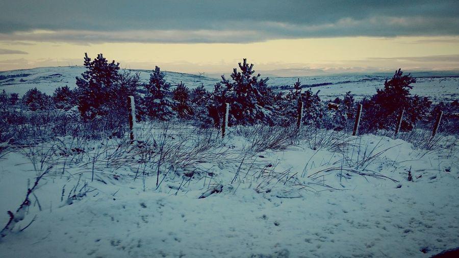 Snow Snowmy Snowway