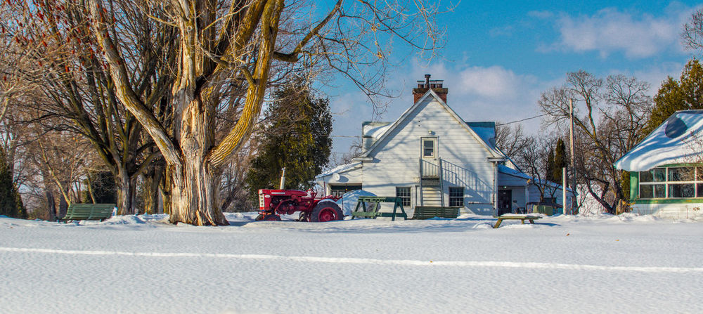 Winter wonderland 50-500mm Farm Farm Life Winter Wintertime Architecture Bare Tree Building Exterior Built Structure Canada Coast To Coast Cold Cold Temperature Day Nature No People Outdoors Sky Snow Sony A68 Travel Destination Travel Destinations Tree Winter Winter Wonderland