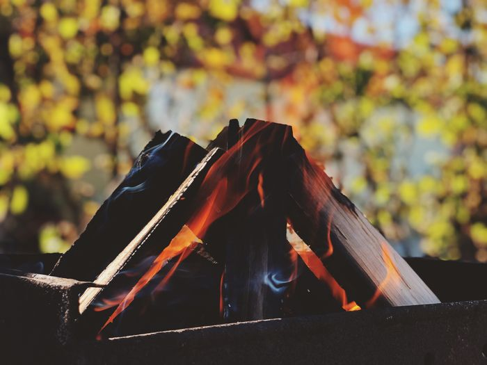 Close-up of firewood burning in pit outdoors