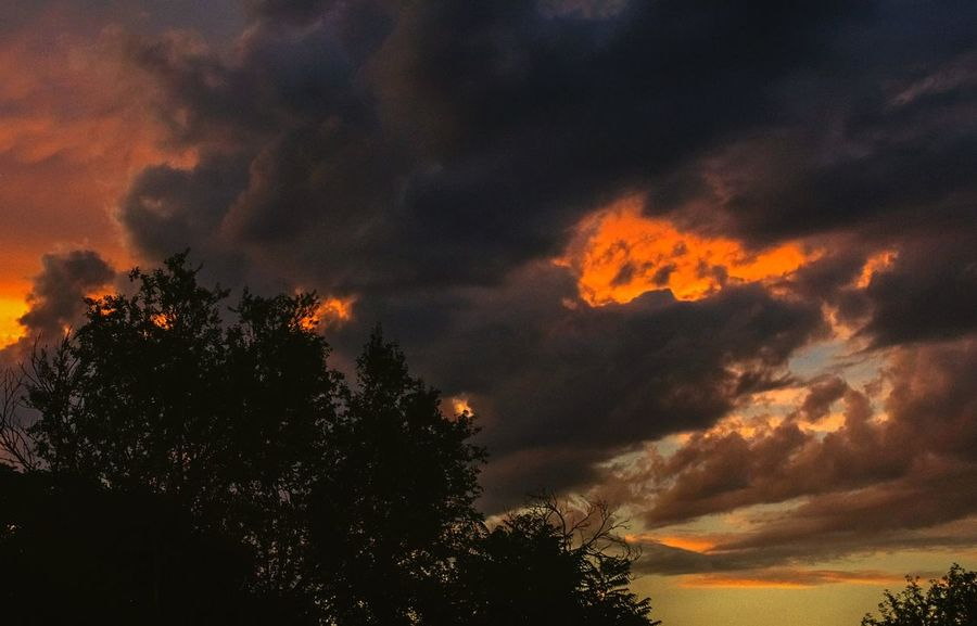 """""""Another toxic sunset over Denver"""" (2017) Sunset Cloud - Sky Nature Tree Outdoors Silhouette Sky No People Beauty In Nature Denver,CO Dusk Colorful Sky"""