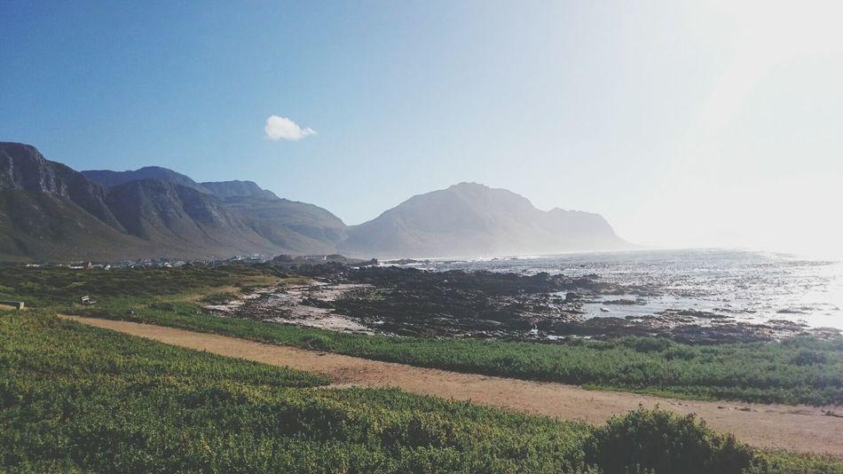 Oceanside Mountains BettysBay Capetown South Africa Ilovecapetown Ilovesouthafrica Sunny Wheremysunglasses Beautiful Nature Beautiful Day